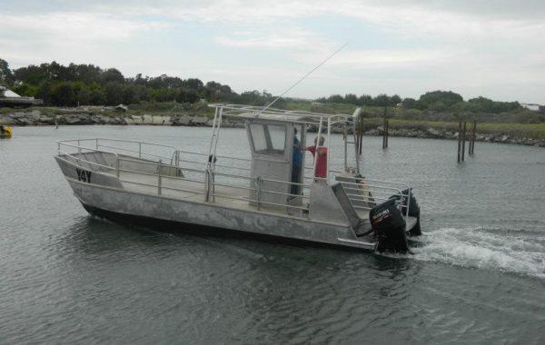 Marine Cat